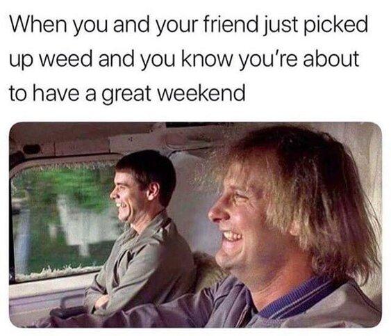Dumb and Dumber Great Weekend Weed Meme