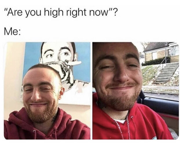 are you high right now weed meme