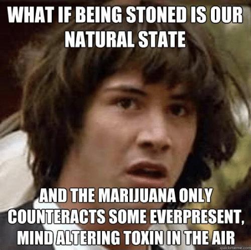 being stoned weed meme