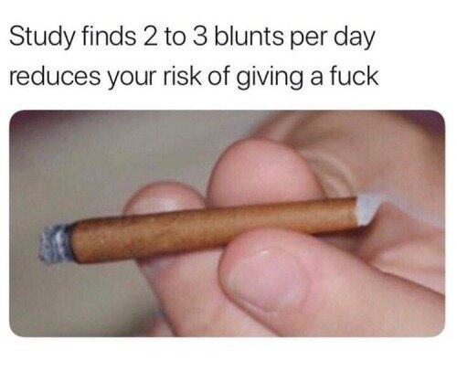 2 to 3 blunts per day weed meme