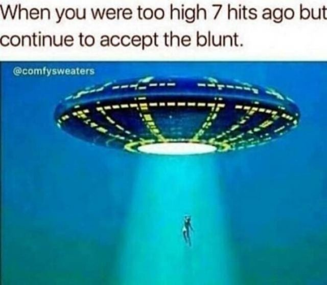 continue to accept the blunt weed meme