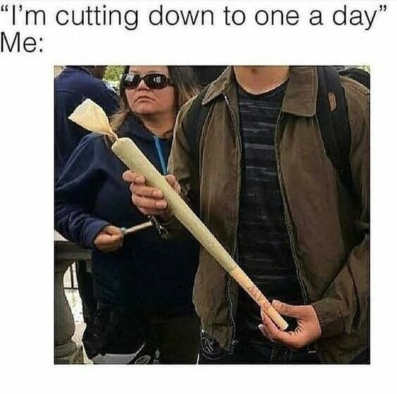 cutting down to one a day weed meme