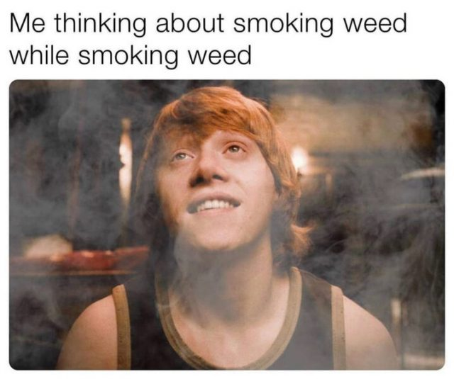 harry potter thinking about smoking weed meme