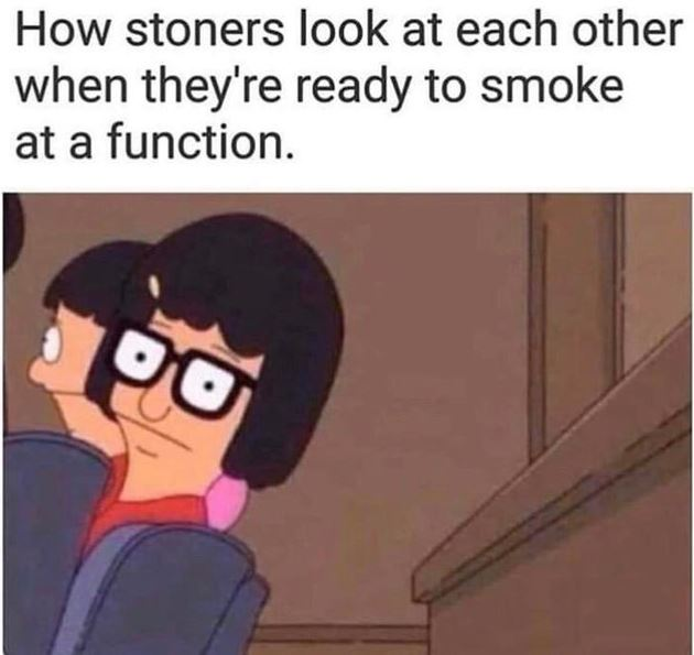 how stoners look at each other meme