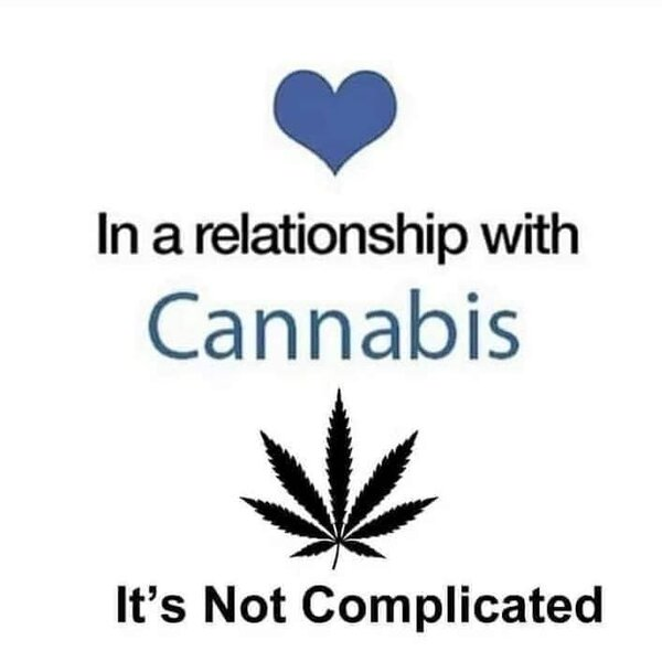in a relationship with cannabis weed meme