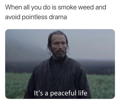 it's a peaceful life weed meme
