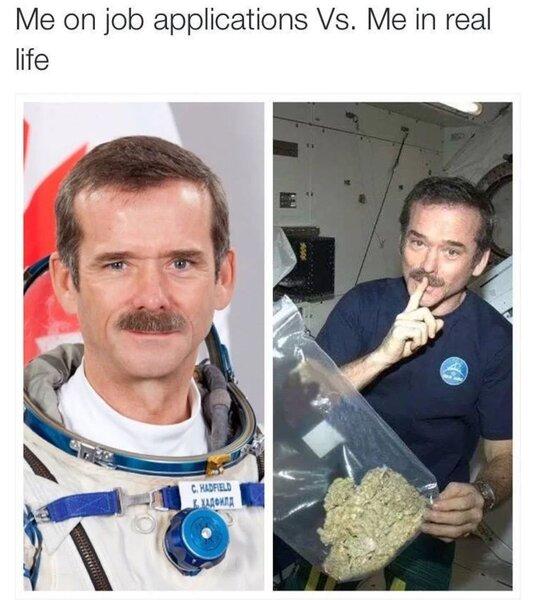 job application weed meme
