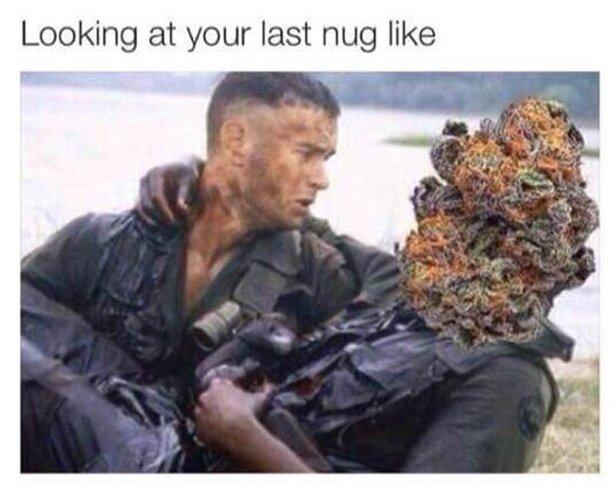 last nug weed meme
