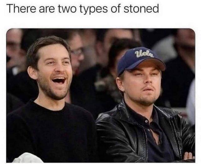 leonardo dicaprio tobey maguire weed meme