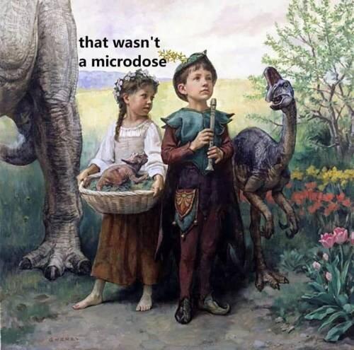microdose weed meme