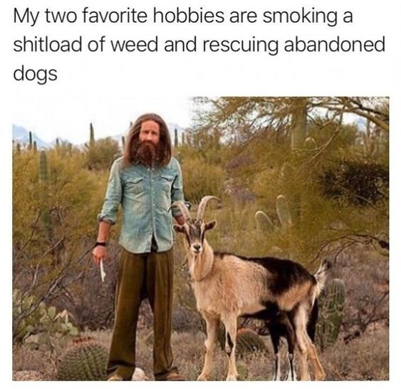 my two favorite hobbies weed meme