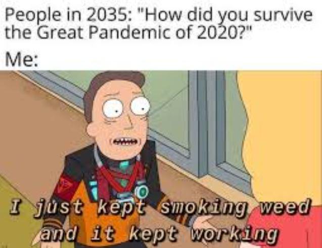 pandemic weed meme