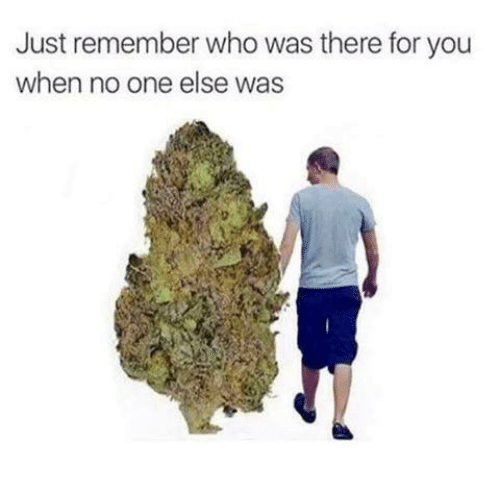 remember who was there for you weed meme