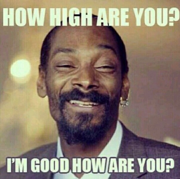 snoop dog how high are you weed meme