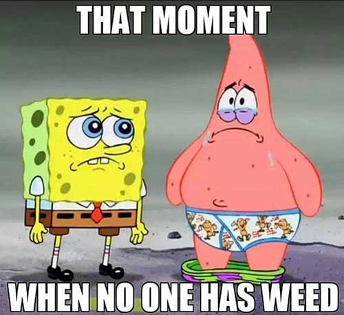 spongebob weed meme