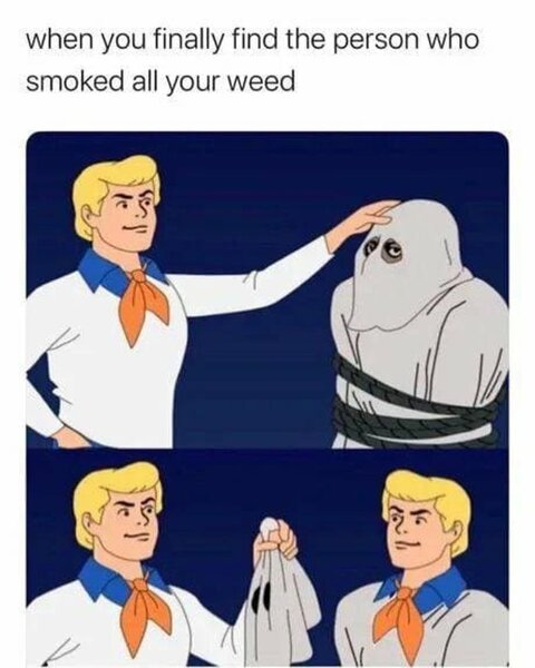 the person who smoked all your weed meme