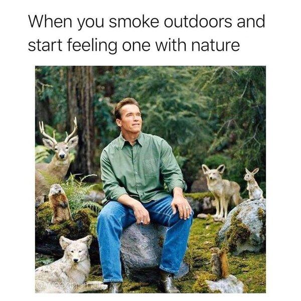 when you smoke outdoors weed meme